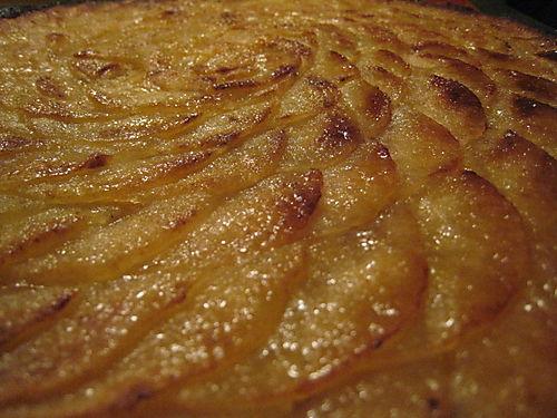 Tarte aux pommes july 2008 006